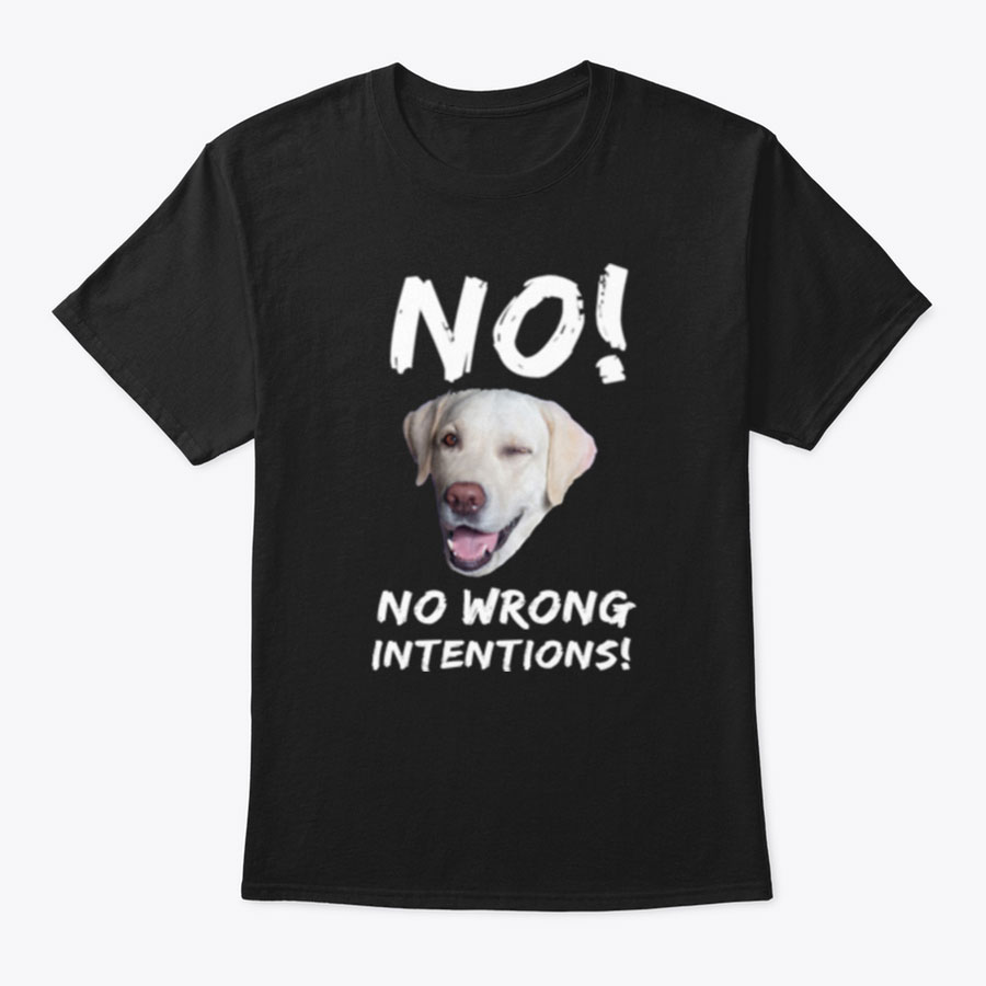 NO! NO WRONG INTENTIONS! T SHIRTS